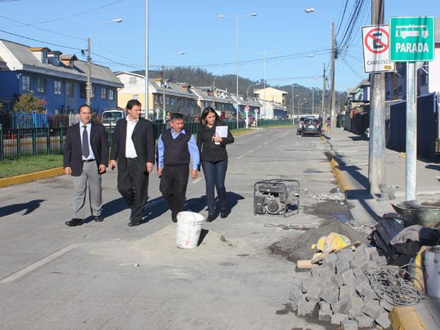 Pavimentación Avenida Zañartu